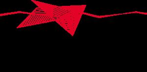 Grafikerin Madelaine Neumayr, der rote Faden